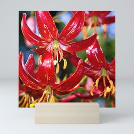 Vibrant Red Martagon Lily Mini Art Print