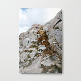 Desolation Mountainside Metal Print