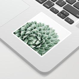 Succulent splendour Sticker