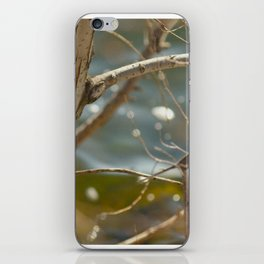 Sparkling water front iPhone Skin