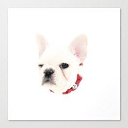 Winking French Bulldog Canvas Print
