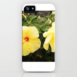 Hibiscus Hydration I iPhone Case
