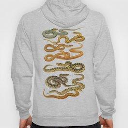 white snakes Hoody