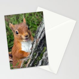 Nature woodland animals smiling squirrel Stationery Cards