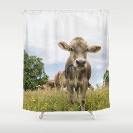Brown Swiss Heifer Shower Curtain