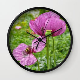 Violet Poppies / Purple Poppies Wall Clock