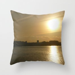 Looking up the Charles Throw Pillow