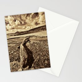 Driftwood Sepia Stationery Cards