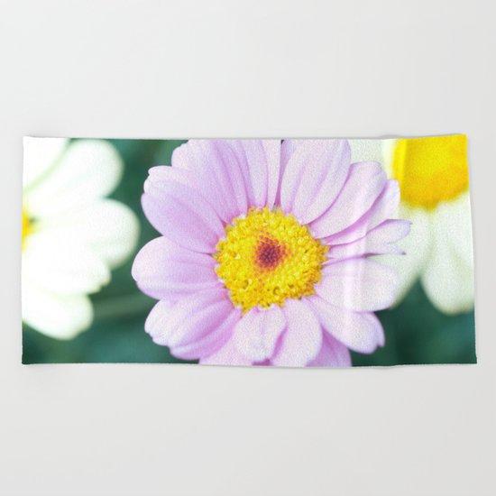 Soft Pink Marguerite Daisy Flower #1 #decor #art #society6 Beach Towel