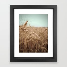 Farm Charm Framed Art Print