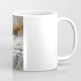 A Shell Coffee Mug