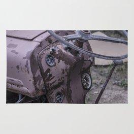 An Old Dog's Days- Color Rug