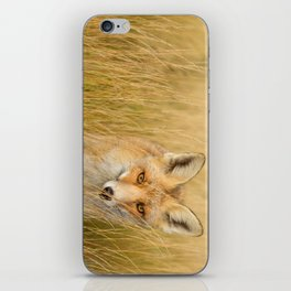 The Catcher in the Grass iPhone Skin