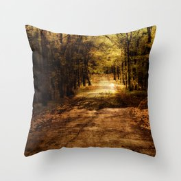 Forever Free Road Throw Pillow