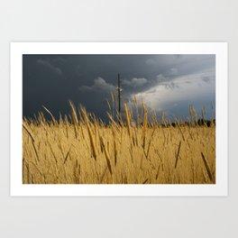Storm Over Wheat  Art Print