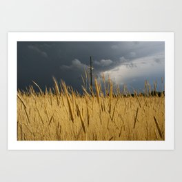 Storm Over Wheat  Art Print