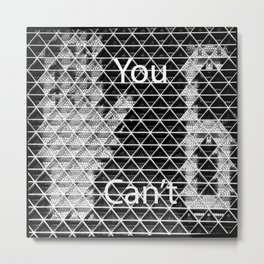You Can't Stop 6! Metal Print
