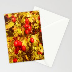 The Coming of Winter. Stationery Cards