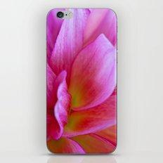 Revealing iPhone Skin