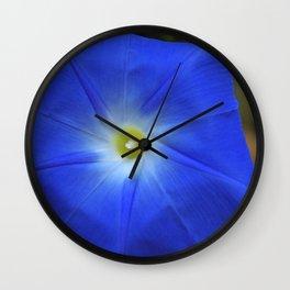 Blue, Heavenly Blue morning glory Wall Clock