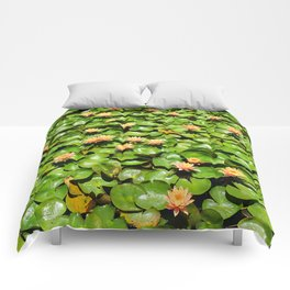 Lily Pile Comforters