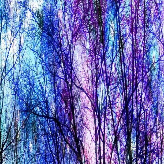 Black Trees Playful Pastels Space Leggings