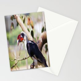 Marwell Hornbill Stationery Cards