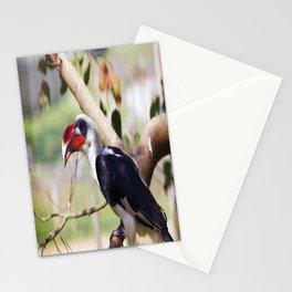 Marwell Hornbill Stationery Cards