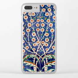 The Turbes of Hagia Sophia, Istanbul, Turkey Clear iPhone Case