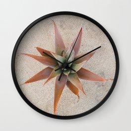 Mexico Succulent Wall Clock