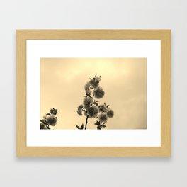 Flora 1  Framed Art Print