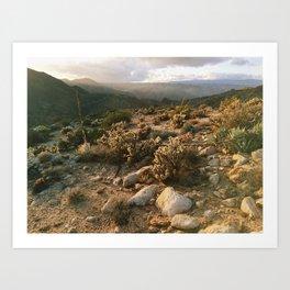 Borrego Desert Sunset Art Print