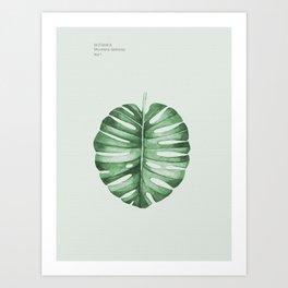 Monstera, Leaf, Tropical, Wall Art Art Print