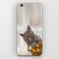 Supersonic Kitty iPhone Skin