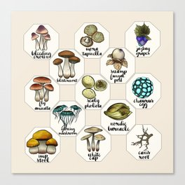 Skyrim Ingredient Illustrations Vol. 1 Canvas Print
