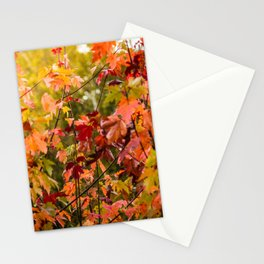 Colours of Fall Stationery Cards