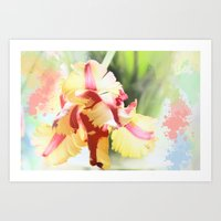 water colour Art Prints featuring Water colour parrot tulip by thea walstra