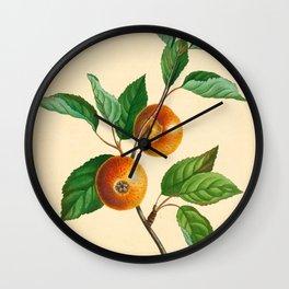 Th Loan Pearmain (1811) Wall Clock