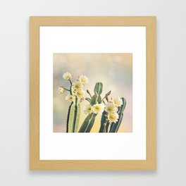 San Pedro Cactus with Beautiful White Flowers Framed Art Print