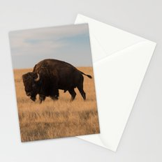 Bison Bull in Badlands Stationery Cards