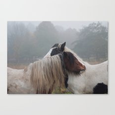 Two Horses Meeting Canvas Print