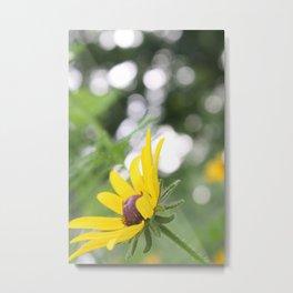 Sunflower & Bokeh Metal Print