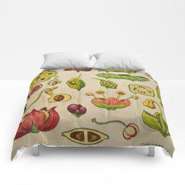 botany Comforters