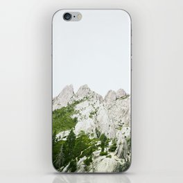 Trees and rocks. iPhone Skin