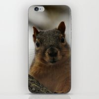 peanuts iPhone & iPod Skins featuring Did you bring peanuts? by IowaShots