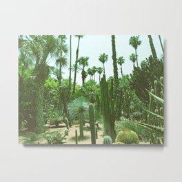 Tropical Cacti Gardens Metal Print
