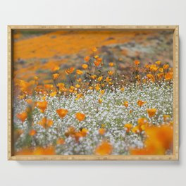 Babies Breath and Golden Poppies of California by Reay of Light Photography Serving Tray