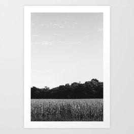 Fields in Missouri Art Print
