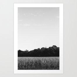 Fields in Missouri Art Print