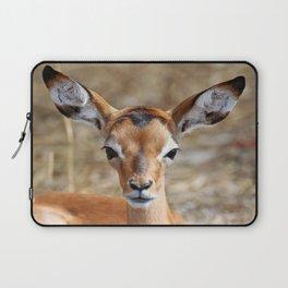Very young Impala - Africa wildlife Laptop Sleeve
